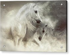 Acrylic Print featuring the digital art Arabian Horses Sandstorm by Shanina Conway