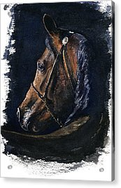 Arabian Acrylic Print
