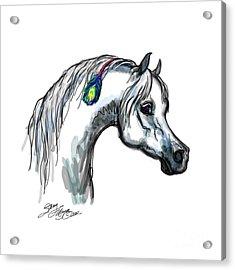 Arabian Peacock Feather Acrylic Print