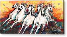 Arabian Sunset Horses Acrylic Print