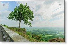 Arbor Day Acrylic Print