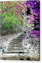 Arbor Pathway Acrylic Print by Tim Allen