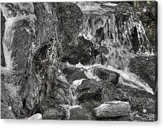 Arboretum Waterfall Bw Acrylic Print by Richard J Cassato