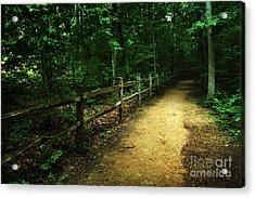 Arboretum Trail 2 Acrylic Print by Jeff McJunkin