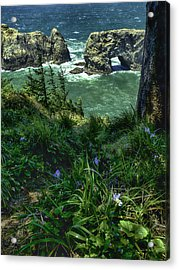 Arch Rock Delight Acrylic Print by Rob Wilson