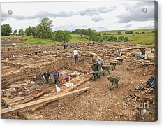 Archaeologists At Work At Roman Vindolanda Acrylic Print