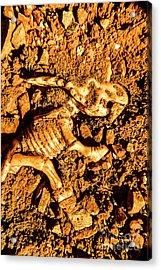 Archaeology Dig Acrylic Print