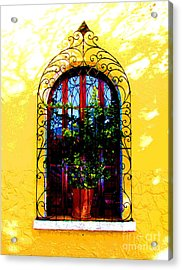 Arched Window By Darian Day Acrylic Print by Mexicolors Art Photography
