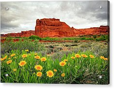 Arches Wildflowers Acrylic Print