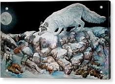 Acrylic Print featuring the painting Arctic Encounter by Sherry Shipley