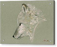 Arctic Fox Head Acrylic Print by Juan  Bosco