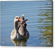 Are You Talking To Me Acrylic Print