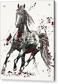 Arena Acrylic Print by Penny Warden