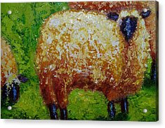 Acrylic Print featuring the painting Aren't Ewe Cute by Marie Hamby