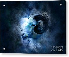 Aries Acrylic Print by Frederick Holiday