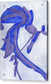 Aristolochia Acrylic Print