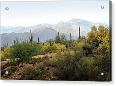 Acrylic Print featuring the photograph Arizona Back Country by Gordon Beck