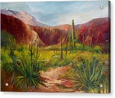 Arizona Beauty Acrylic Print by Robert Carver