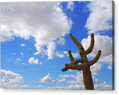 Arizona Blue Sky Acrylic Print