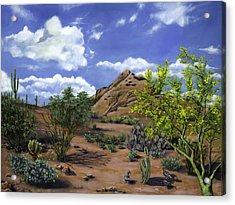 Arizona Acrylic Print by Lisa Reinhardt