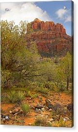 Arizona Outback 3 Acrylic Print by Mike McGlothlen