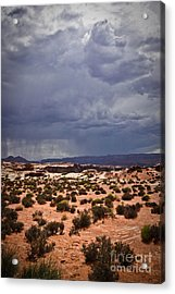 Arizona Rainy Desert Landscape Acrylic Print by Ryan Kelly