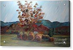Arkansas Autumn Acrylic Print by Nadine Rippelmeyer