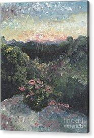 Arkansas Mountain Sunset Acrylic Print by Nadine Rippelmeyer
