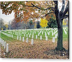Arlington National Cemetery Virginia Acrylic Print by Brendan Reals