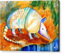 Armadillo Reflections Acrylic Print by Carlin Blahnik