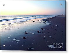 Arms Wide Open Acrylic Print by Robyn King