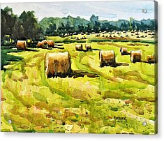 Army Of Hay Bales Acrylic Print by Spencer Meagher