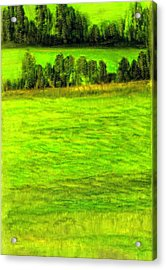 Aroostook County Maine Acrylic Print by FeatherStone Studio Julie A Miller
