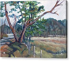 Around Cades Cove Acrylic Print by Janet Felts