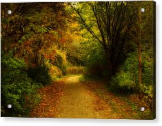 Acrylic Print featuring the photograph Around The Bend - Landscape by Anthony Rego