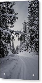 Around The Bend Acrylic Print by Albert Seger
