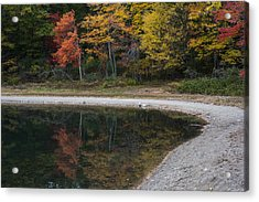 Around The Bend- Hiking Walden Pond In Autumn Acrylic Print by Toby McGuire