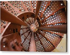 Around The Twist Acrylic Print by Susette Lacsina