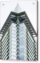 Acrylic Print featuring the photograph Arrowhead Architecture by Chris Dutton