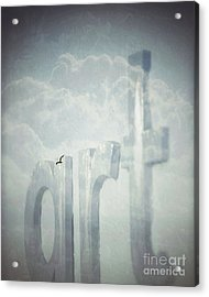 Art In The Clouds Acrylic Print by Darla Wood