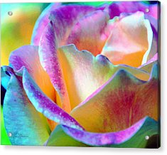 Artful Colorful Rose Acrylic Print by Lorrie Morrison
