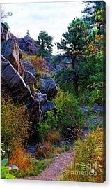 Arthur's Rock Trail Acrylic Print
