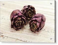 Artichokes Acrylic Print by James And James