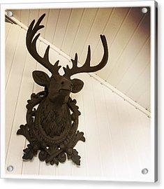 Artificial Deer Antlers Acrylic Print by Matthias Hauser