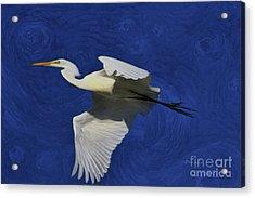 Acrylic Print featuring the painting Artistic Egret by Deborah Benoit