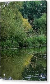 Artistic Reflection September 2015 Acrylic Print by Leif Sohlman