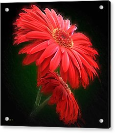 Artistic Touch Acrylic Print