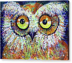 Artprize You That's Hoo Audience Participation Acrylic Print