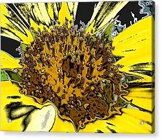 Artsy Sunflower Acrylic Print by Sonya Chalmers