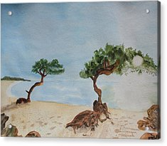 Aruba Sunrise Acrylic Print